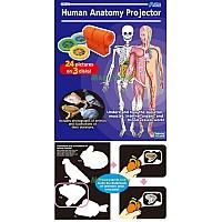 Анатомични органи - проектор