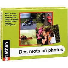 Думи във фотографии - работилница за предлози, прилагателни и глаголи